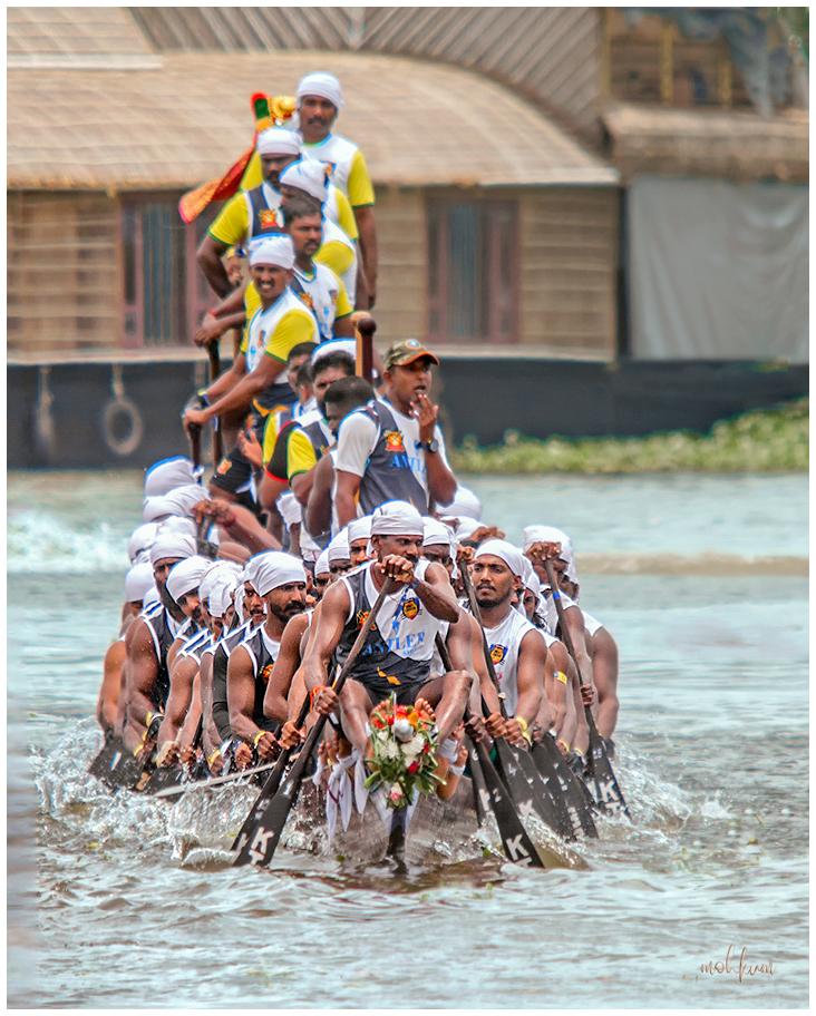 snake boat race nehrutrophy alleppey kerala