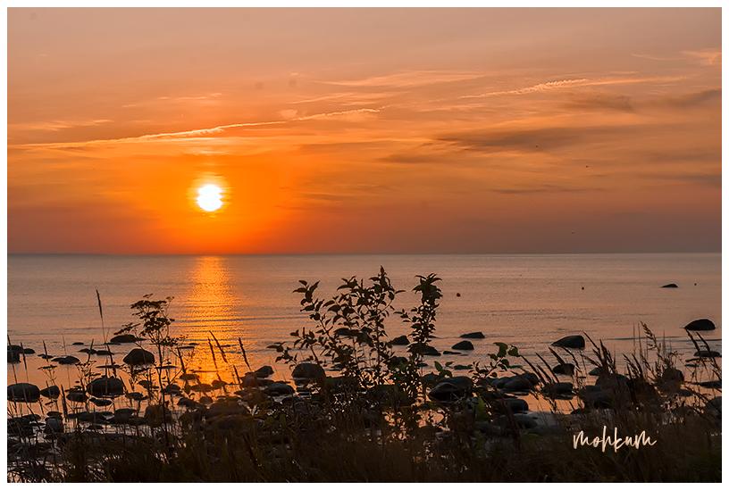 sunset tallinn estonia
