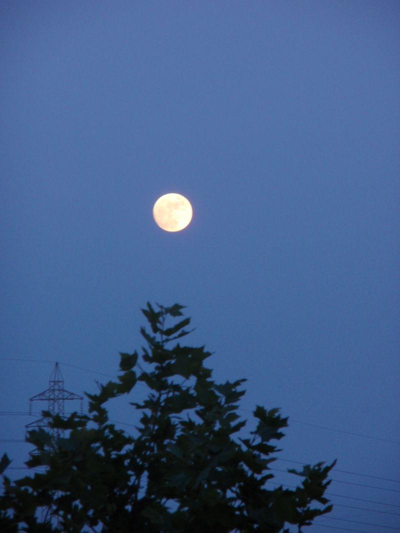Gosto de ti daqui até à Lua!