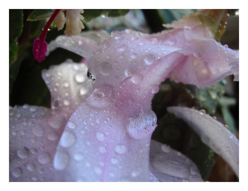 Chuva chuva chuvinha