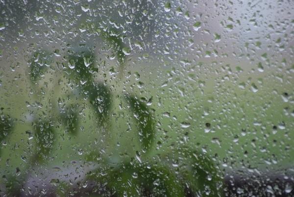 ... e  a chuva continua ...