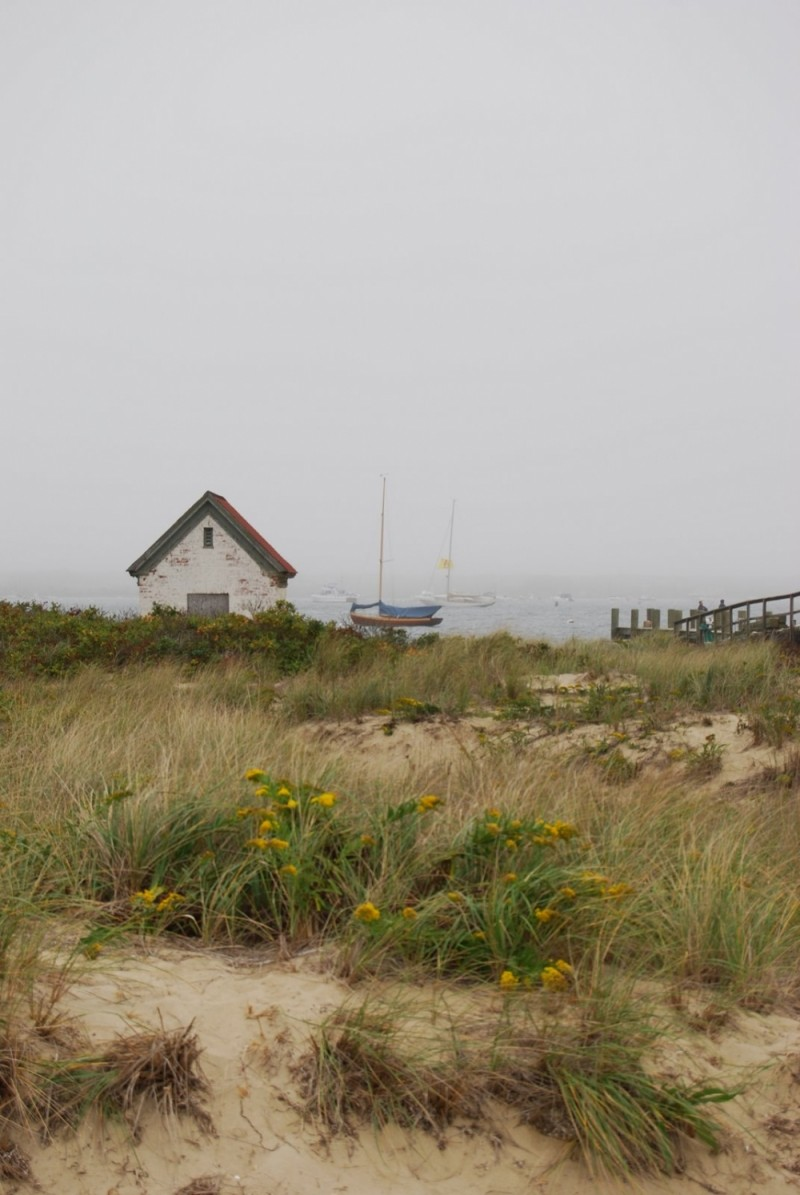 Early morning at the beach with fog
