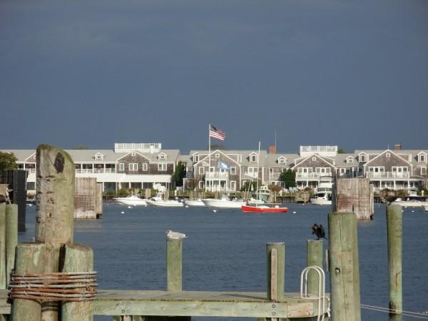 Morning at the harbor