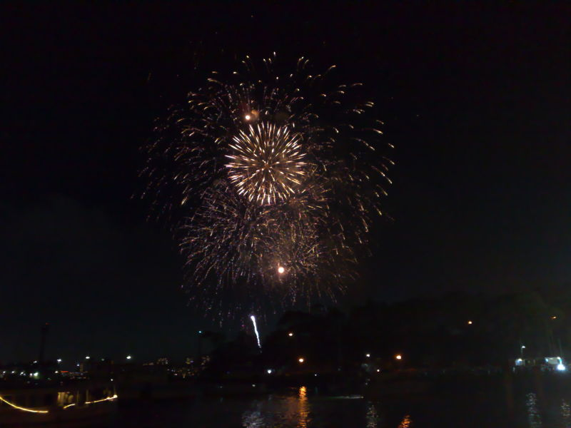 New Year's Eve in Sydney (5)