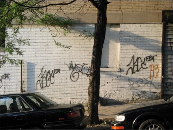 """""""143"""" Graffiti, New York, NY. 07/2007"""