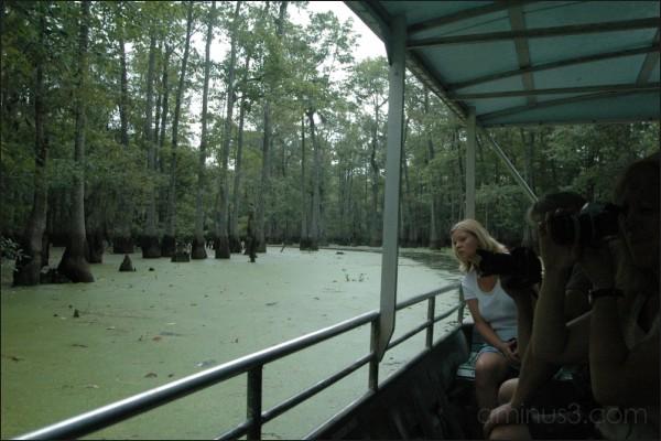 Lookin' for gators, Swamp Tour, Louisiana. 08/2005