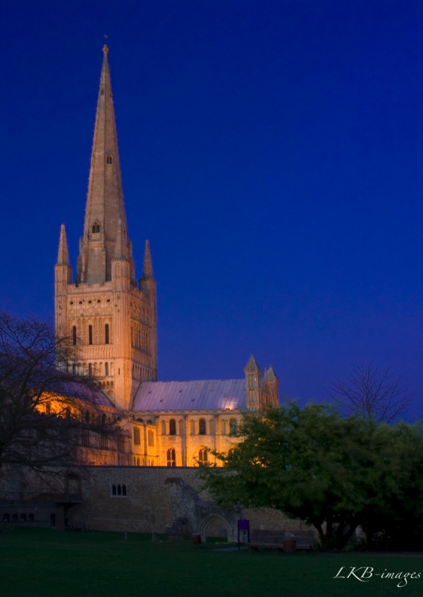 Evening Light on Norwich Cathedral