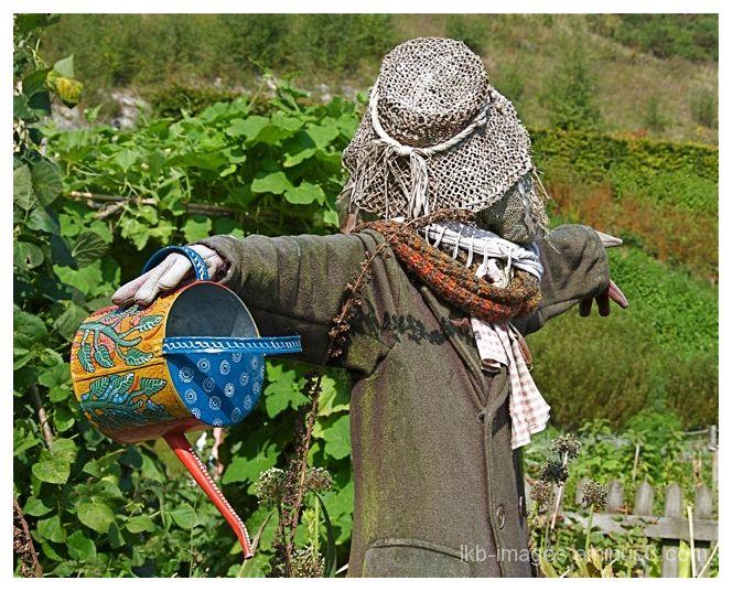 Mr. Scarecrow