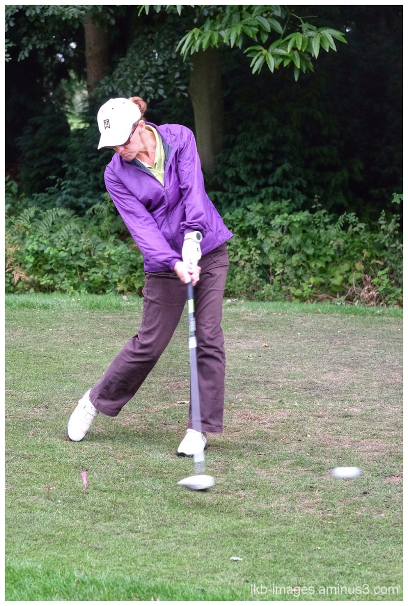 Golf #3