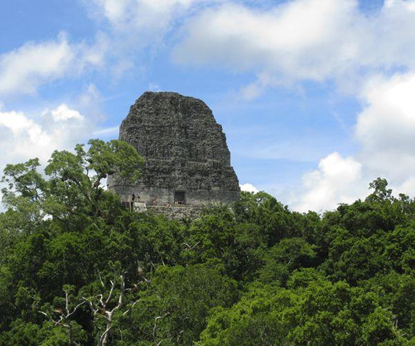 Tikal, runes maies
