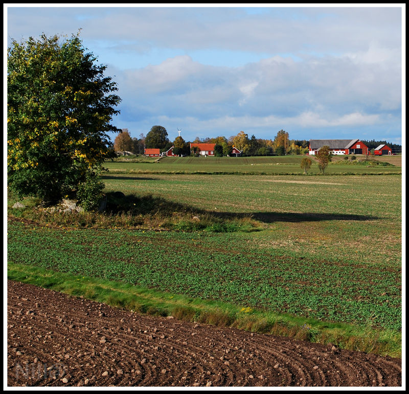 swedish agricultural