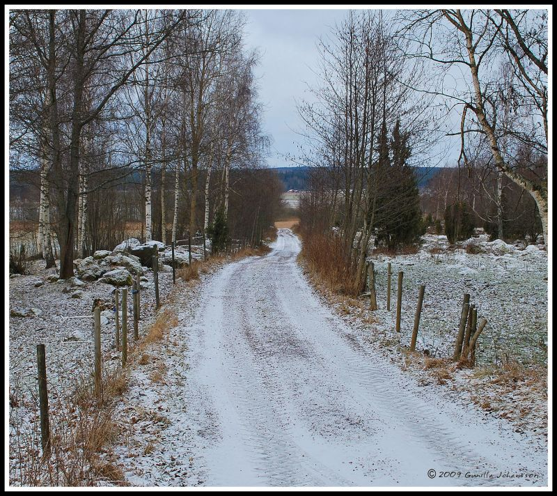 Swedish rural