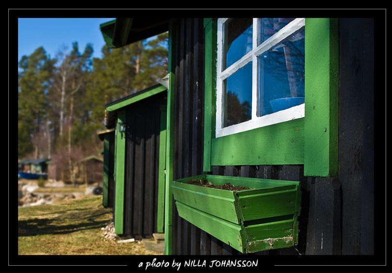 green fishing cabins