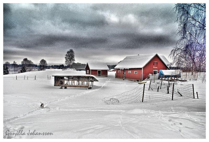 snowy rural