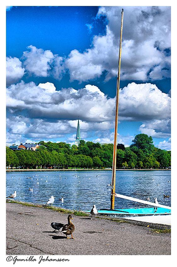 tower & pole