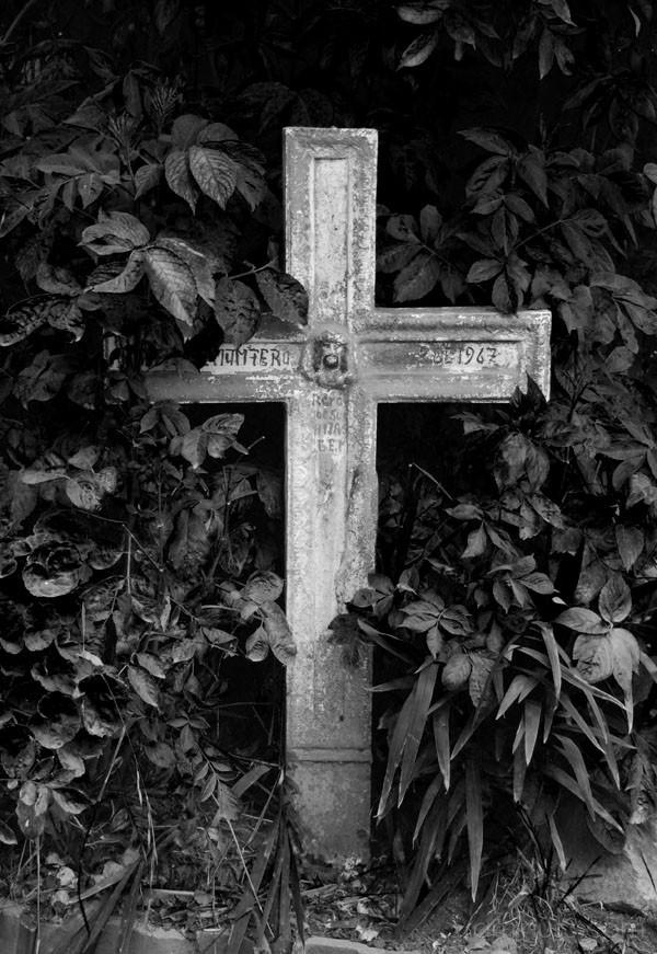 Overgrown Salinas Cemetery, Ecuador