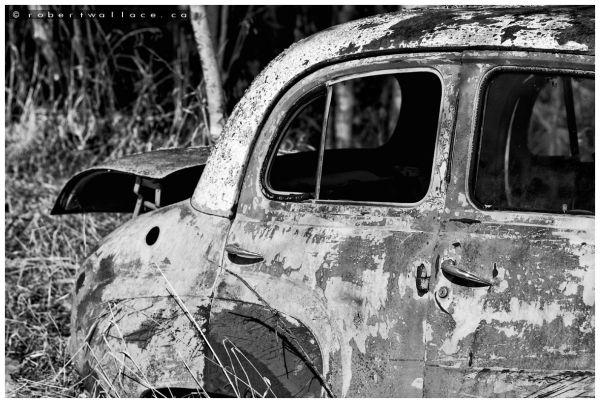Abandoned Farm III