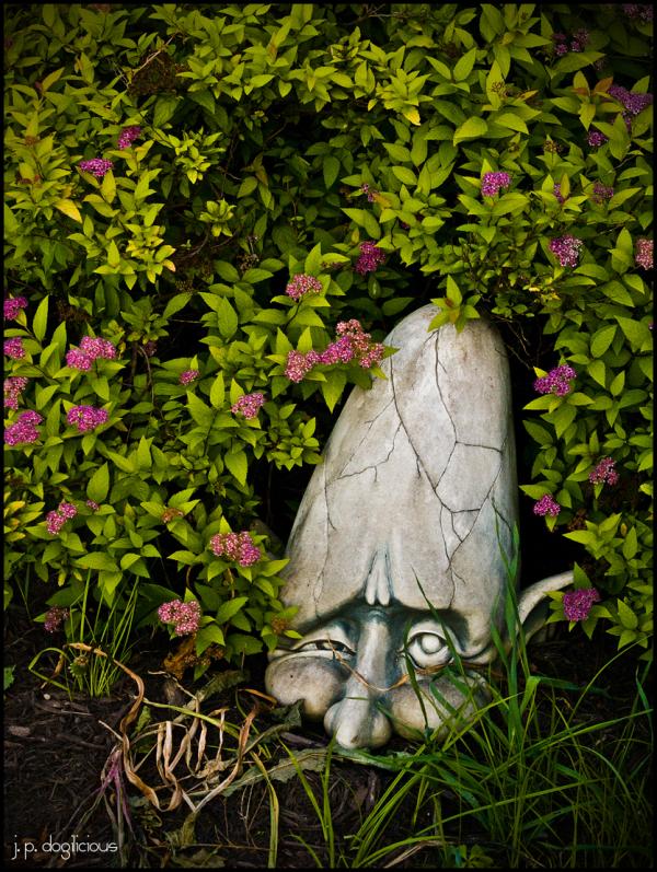 A Head in the Garden