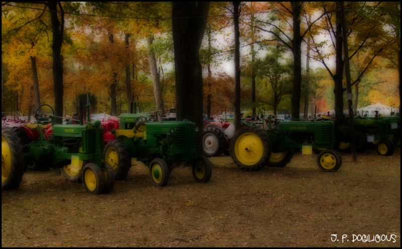 Tractors in the Grove