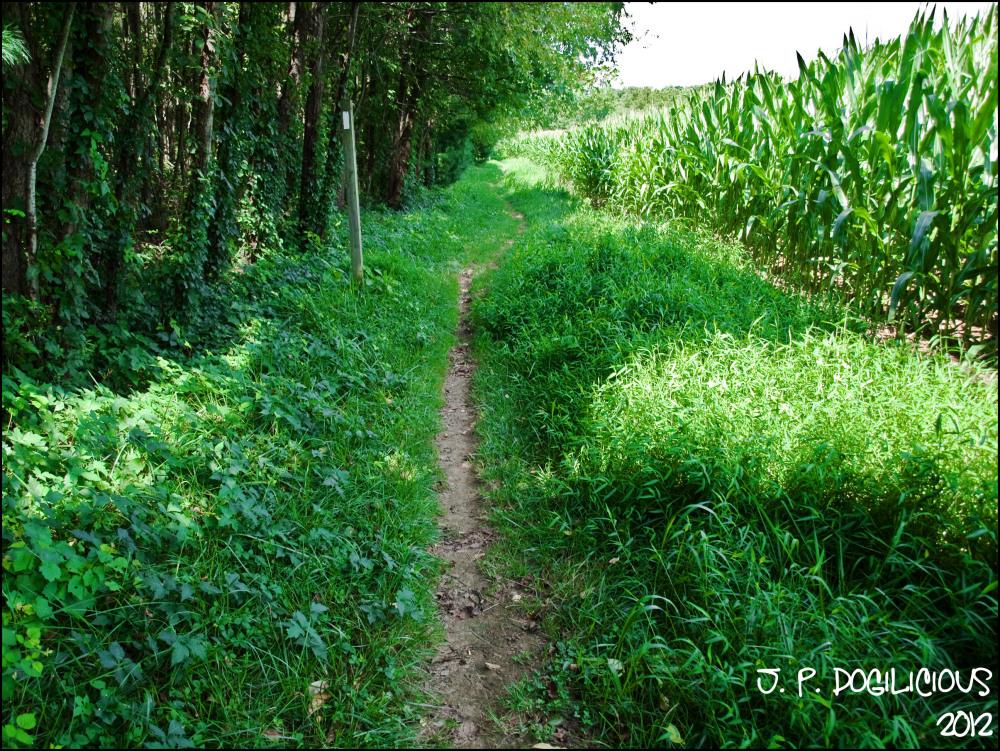 Appalachian Trail Cumberland County