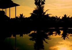 Golden sunset..