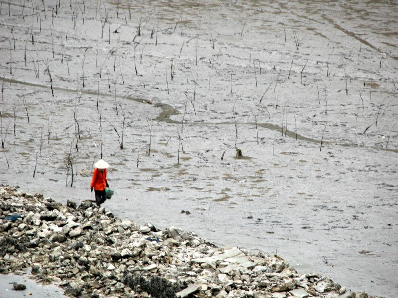 Alone, Farmer walks in contrast
