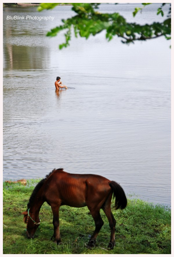 Man wading in water, horse grazing on riverbank