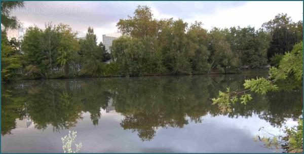 fin d'après midi près du lac ...
