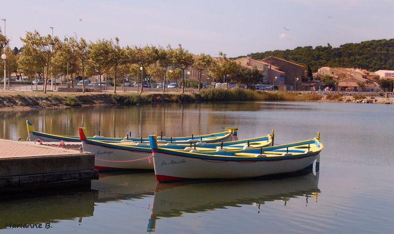 Des barques .... et moi ...