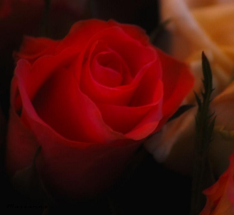 rouge baiser ...