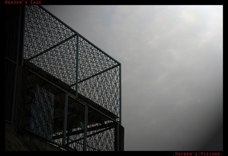 Heaven's Cage