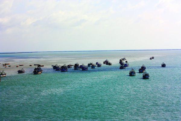 The shipping fleet