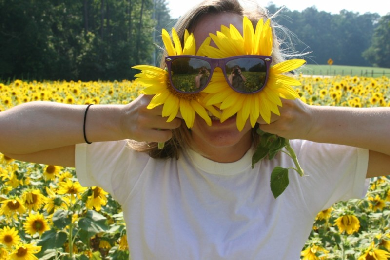 face sunflowers sunglasses summer