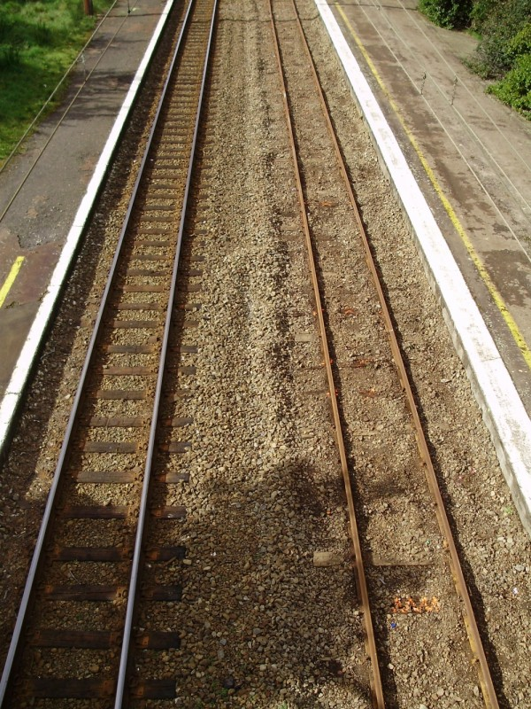 Parallel Paths (with occasional crossovers)