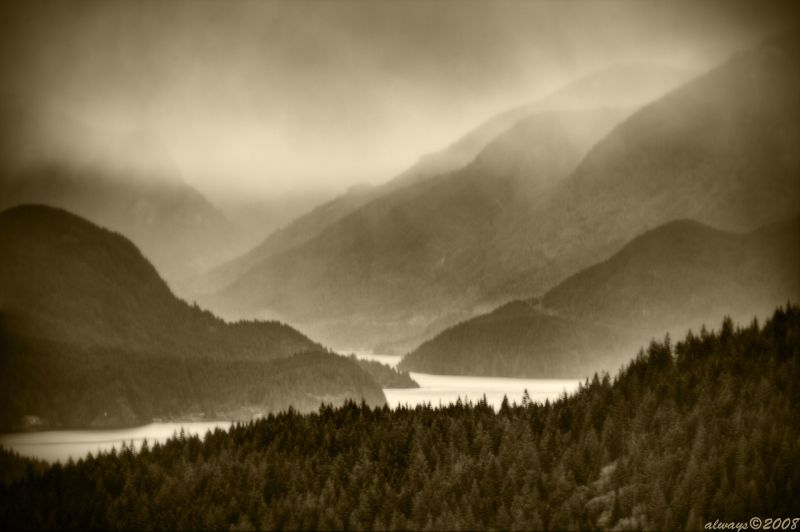 Fog on Indian Arm
