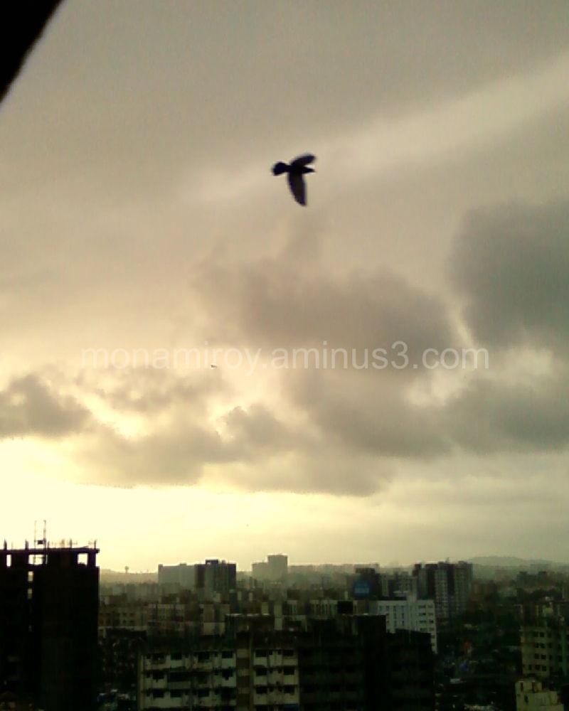Bombay raaga