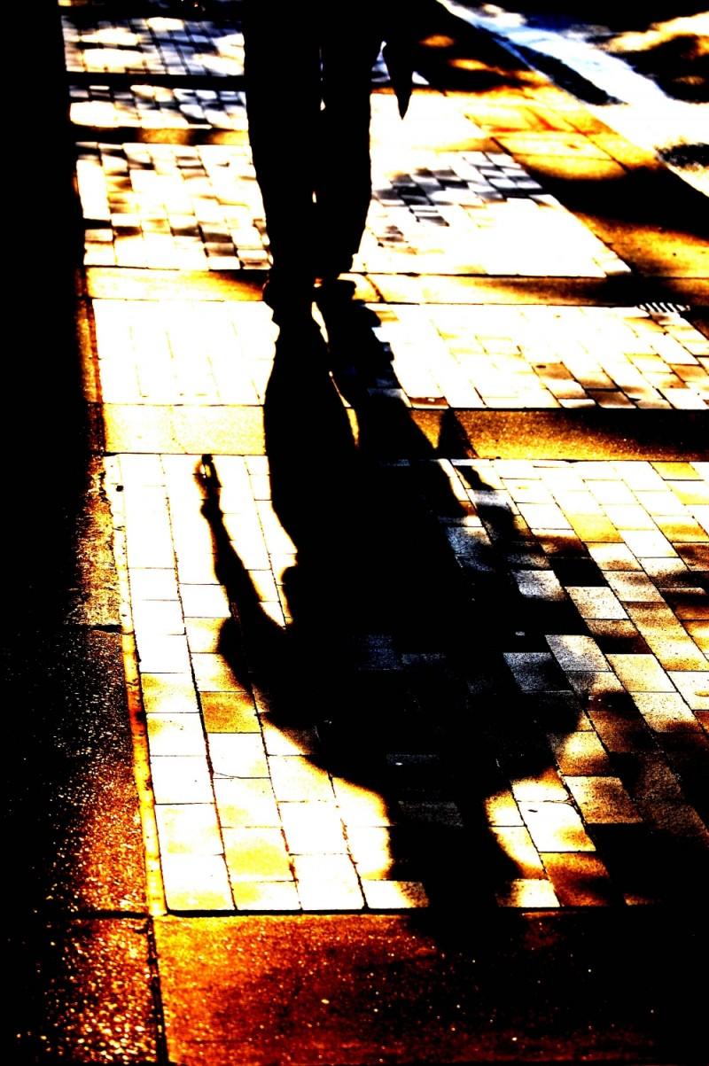 Samson Shadow