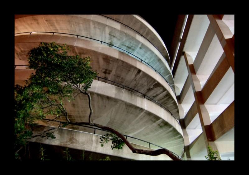 Nature and concrete