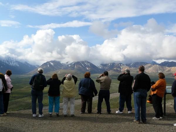 International Tourist Busload Shoots Denali Park