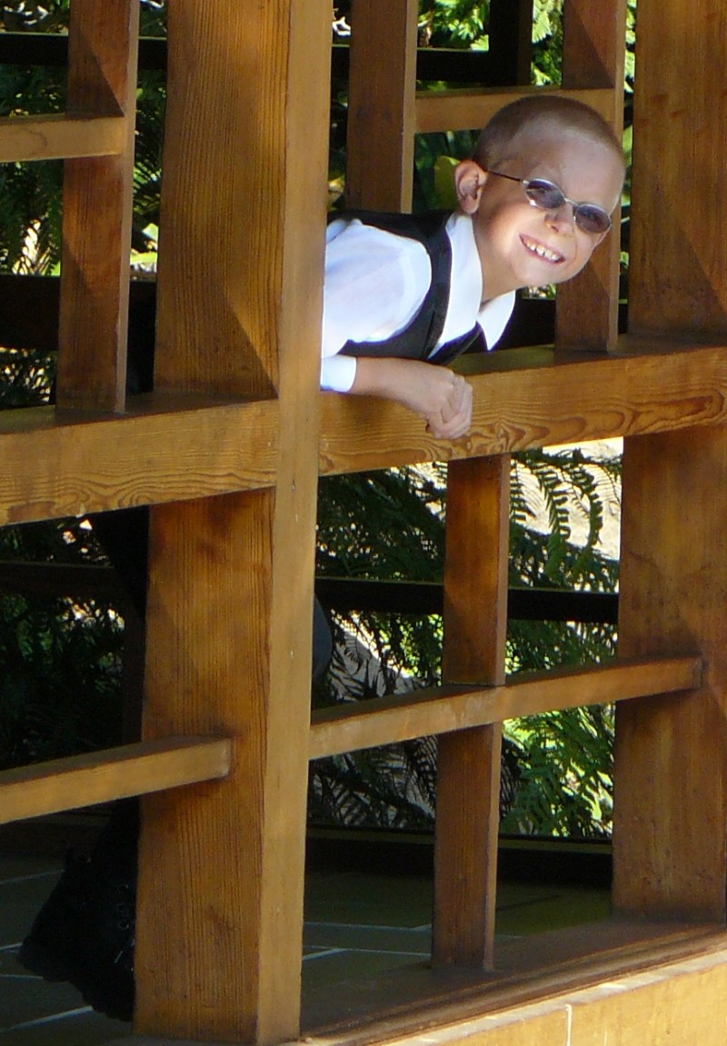 Playing Peek-A-Boo at the Japanese Tea House, L.A.