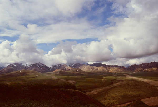 Sweeping landscape of Denali National Park