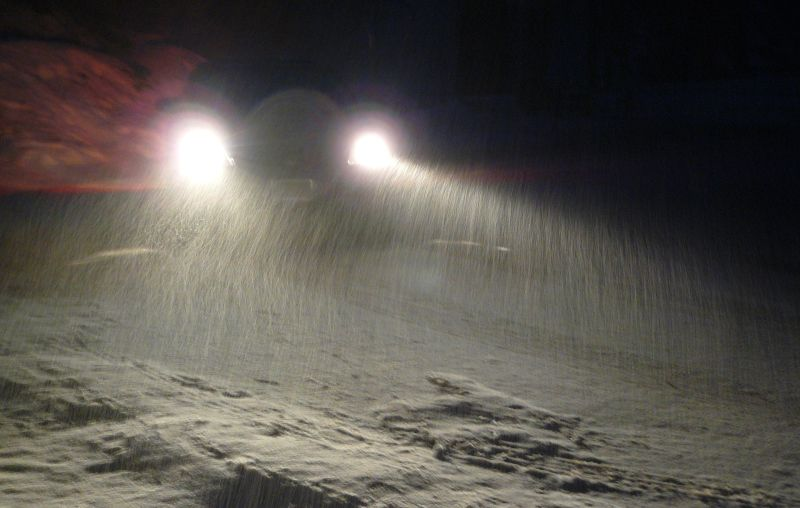 Snowing showing up by headlights in Sequoia Park