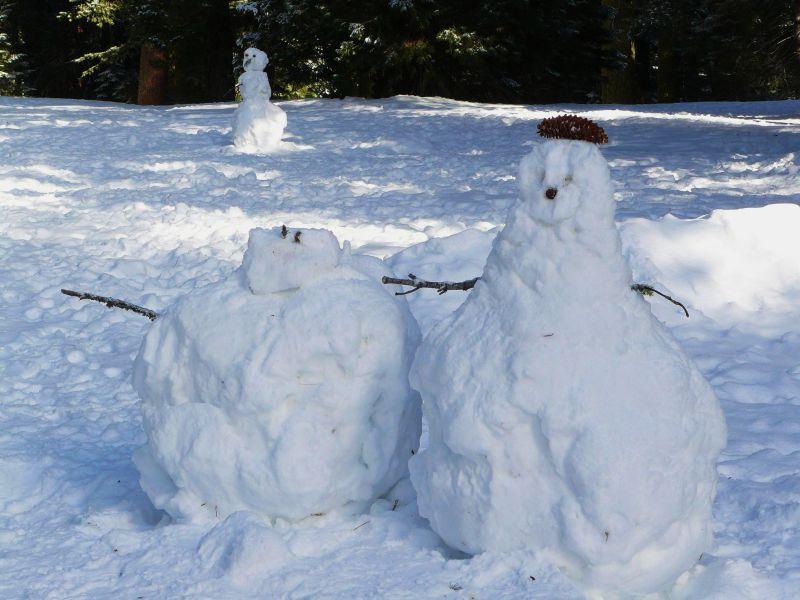 Snowmen trio wait in a Sequoia National Park Field