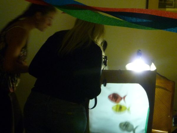 Kumele's Birthday Party Shadow Puppet Show