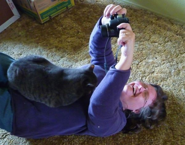 trying to photograph the wrestling cat