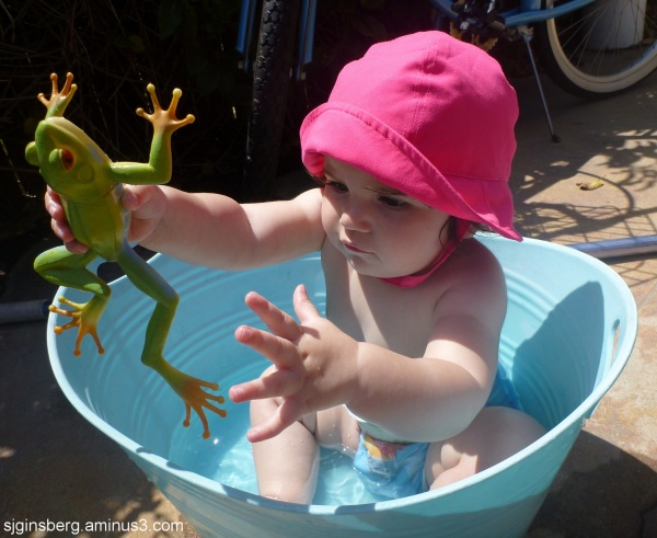 Turunj with frog in garden tub
