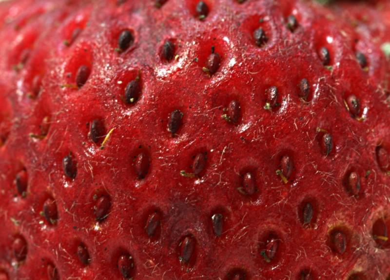 24 - Strawberry
