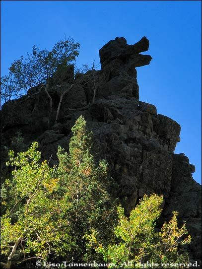 Donald Duck Rock, on La Luz in the Sandias