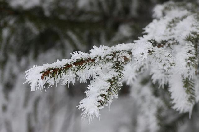 Winter in Sweden