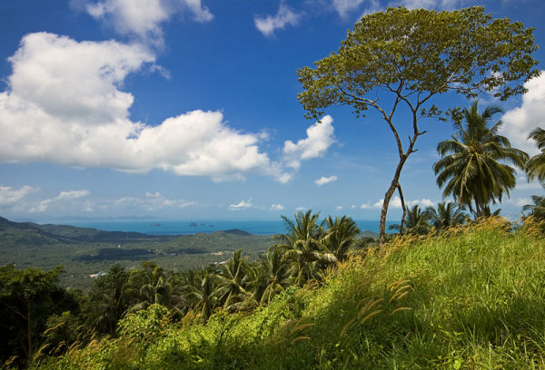 Koh Samui Thailand landscape